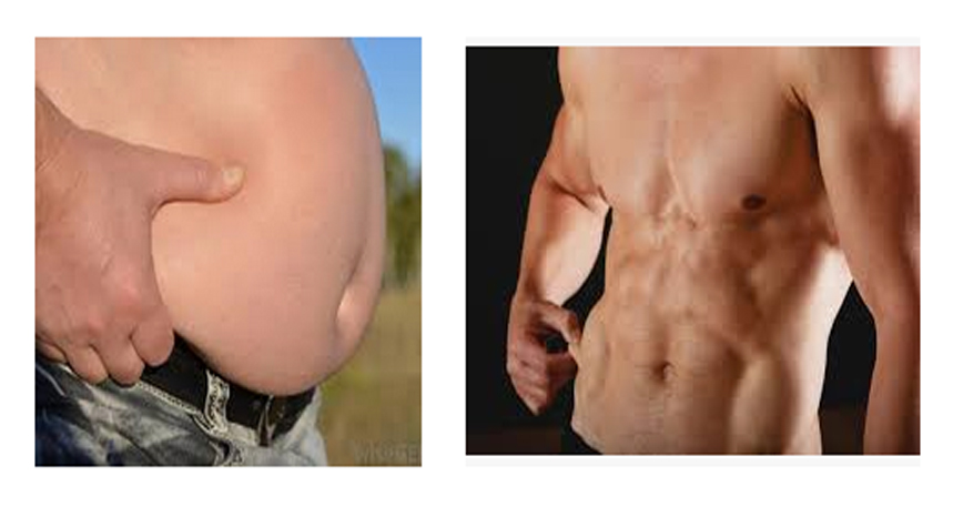 White Fat vs Brown Fat – Understanding the Difference for Better Health
