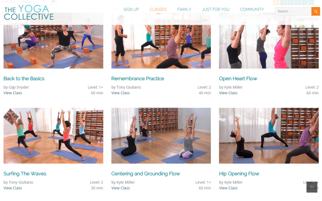 The Yoga Collective Online Studio